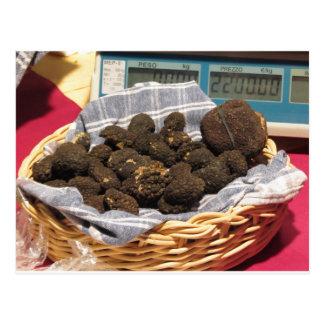 Groupe de truffes noires chères italiennes carte postale