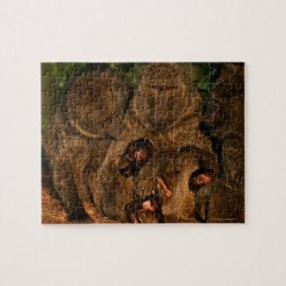 Groupe d'observation olive de babouins (anubis de puzzle