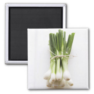 Groupe d'oignons de ressort sur le hachoir blanc magnet carré