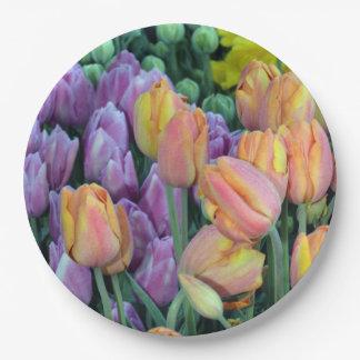 Groupes de Coloful de tulipes Assiettes En Papier