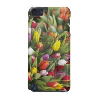 Groupes de tulipes colorées coque iPod touch 5G