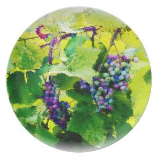 groupes des raisins 17 assiette