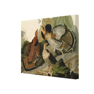 Grouse de Ruffed par John Audubon Toile