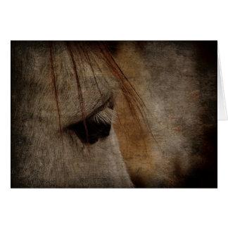 Grunge grise de visage de cheval cartes