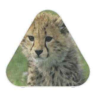 Guépard, (jubatus d'Acinonyx), la Tanzanie, Haut-parleur Bluetooth