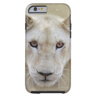 Guerrier blanc Afrique d'esprit de lion Coque Tough iPhone 6