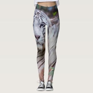 Guêtres blanches de tigre leggings