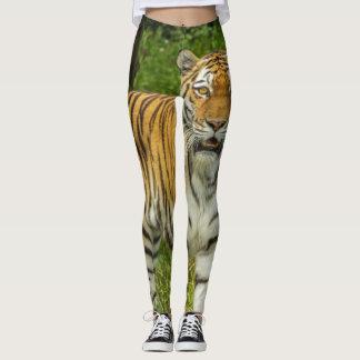 Guêtres d'impression de tigre leggings