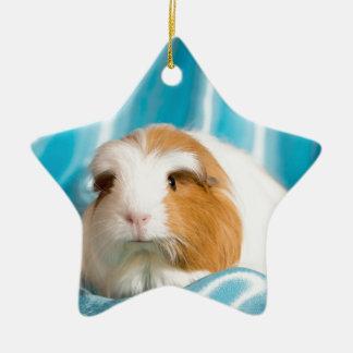guinea pig ornement étoile en céramique