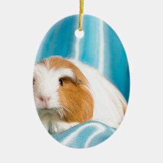 guinea pig ornement ovale en céramique