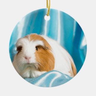 guinea pig ornement rond en céramique