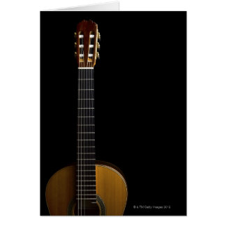 Guitare acoustique 2 cartes