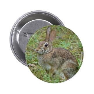 Habillement sauvage et cadeaux du lapin oriental I Badge