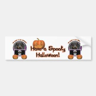 Halloween - juste un Lil éffrayant - teckel - Wins Adhésifs Pour Voiture