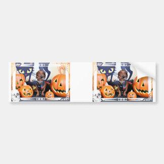Halloween - teckel - Lexington Autocollants Pour Voiture