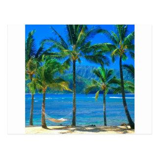 Hamac Kauai Hawaï de plage Carte Postale