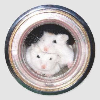Hamster de bébé : Empilé ! Sticker Rond