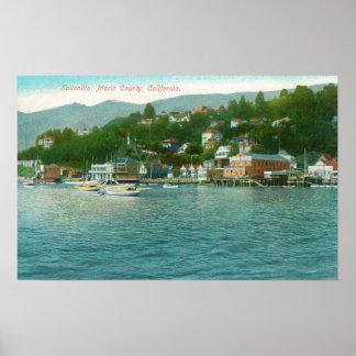 Harborview avec des yachts et des bateaux à voile posters