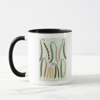 Haricots Mug