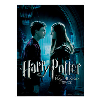 Harry et Ginny 1 Posters