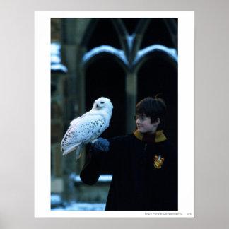 Harry et Hedwig 2 Poster