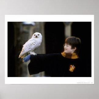 Harry et Hedwig 3 Affiche