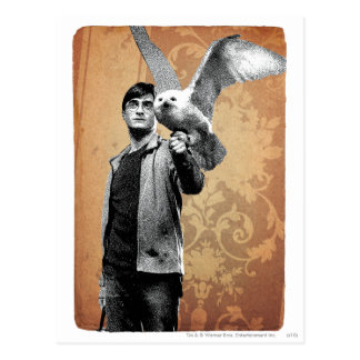 Harry Potter 12 Cartes Postales