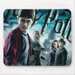 Harry Potter avec Dumbledore Ron et Hermione 1 Tapis De Souris