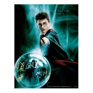 Harry Potter et Voldemort seulement un peuvent Carte Postale
