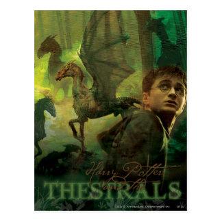 Harry Potter Thestrals Cartes Postales