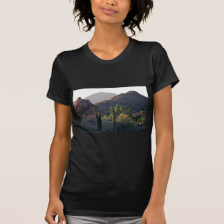 Hausse T-shirts