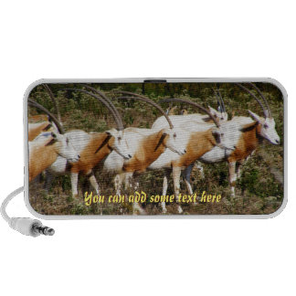 Haut-parleur à cornes d'oryx de cimeterre