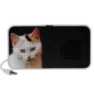 Haut-parleur blanc de chaton