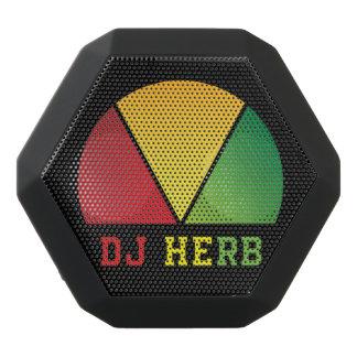 Haut-parleur d'herbe du DJ