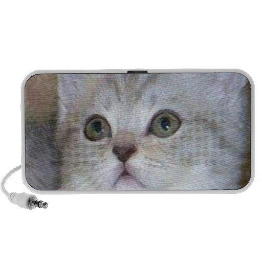Haut-parleurs de griffonnage de chaton