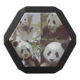 Haut-parleurs Noirs Sans-fils collage de quatre images de panda