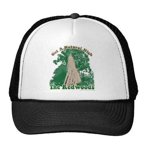 Haute naturelle de séquoia casquettes de camionneur