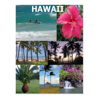 Hawaï merveilleuse par Khoncepts Carte Postale