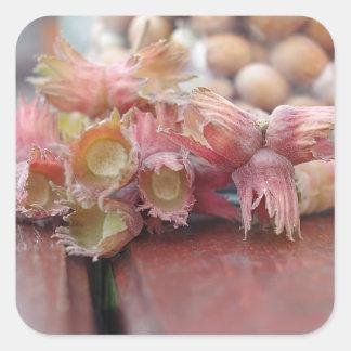 Hazelnuts.JPG Sticker Carré