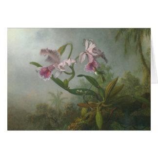 Heade - deux orchidées et un oiseau de ronflement carte de vœux