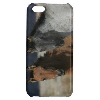 Headshot de poulain de mustang étui iPhone 5C