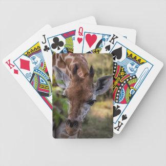 Headshot d'une girafe jeu de cartes