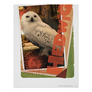 Hedwig 1 poster