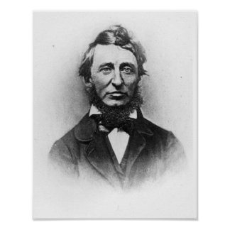 Henry Thoreau Posters