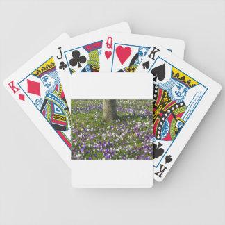 Herbe de crocus de gisement de fleurs au printemps jeu de poker