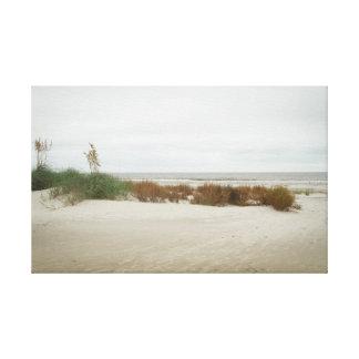 Herbe dunaire un jour nuageux toiles