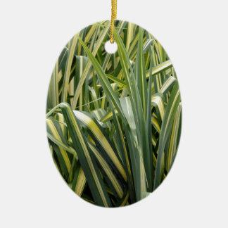 Herbe variée de carex ornement ovale en céramique
