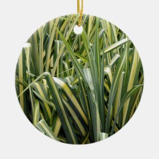 Herbe variée de carex ornement rond en céramique