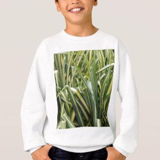 Herbe variée de carex sweatshirt