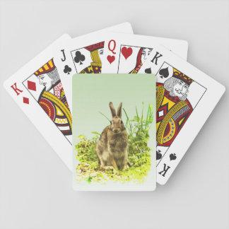 Herbe verte avec des cartes de jeu de lapin de cartes à jouer